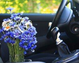 Как сделать освежитель воздуха для машины собственноручно