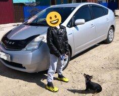 Toyota Prius – любимица нашей семьи