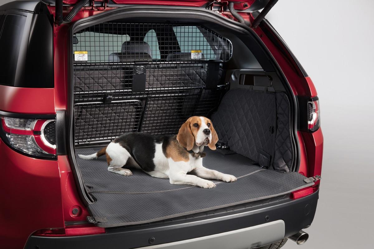 Чехол для перевозки собак в багажнике
