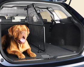 Решетка в багажник для собак