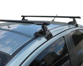 багажник на крышу муравей