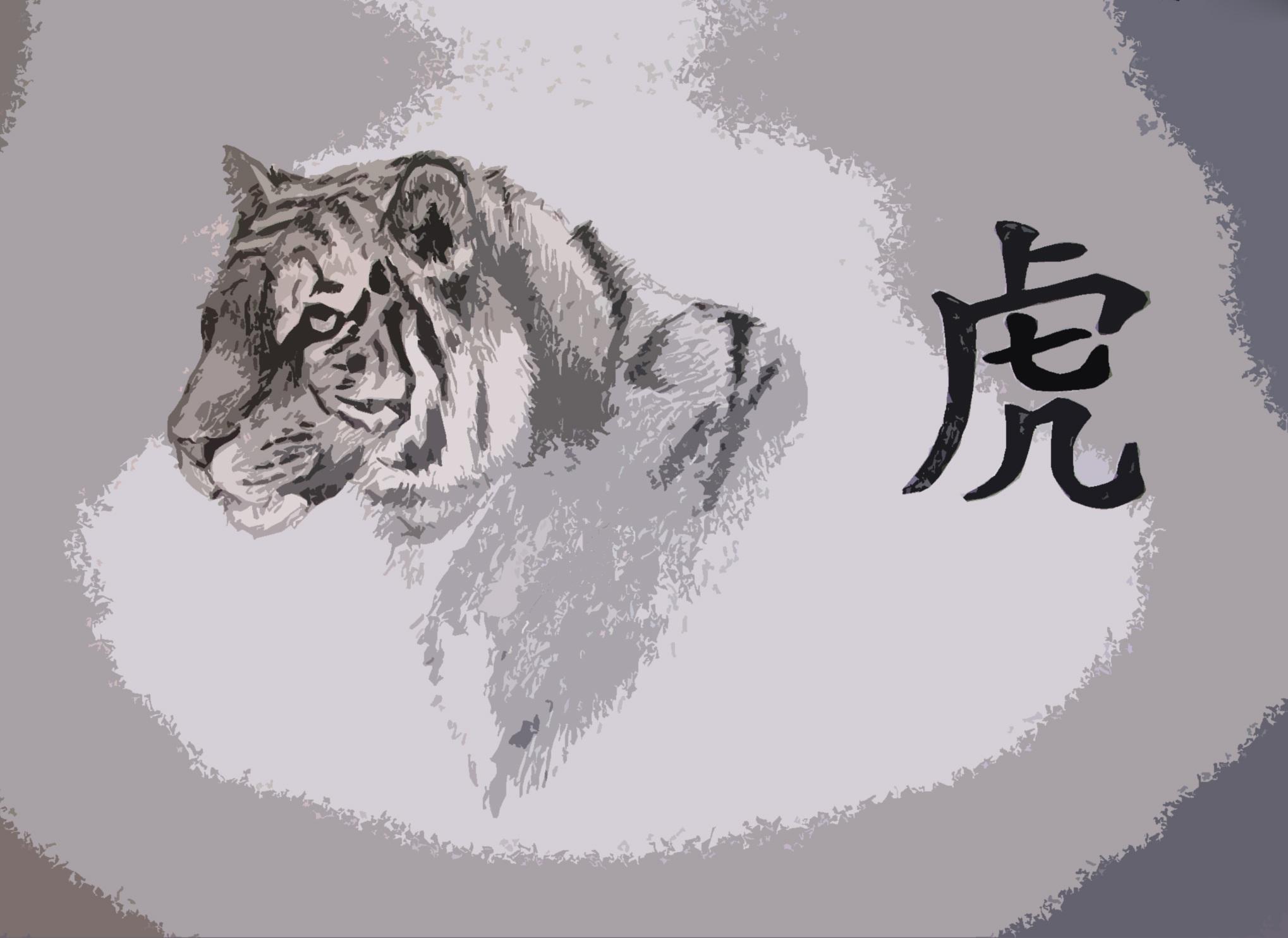 Иероглиф «Тигр»