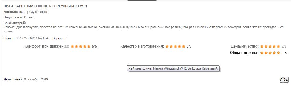 Отзыв на Nexen Winguard WT1