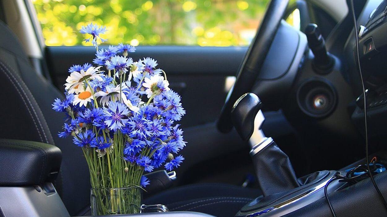 Делаем освежитель воздуха для авто